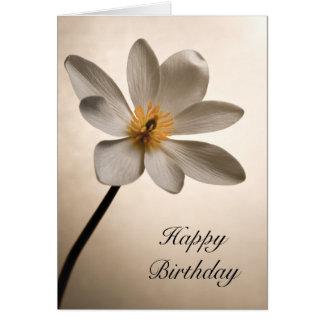 Carte d'anniversaire blanche de fleur sauvage