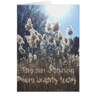 Carte d'anniversaire brillante de Sun