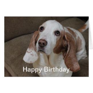 Carte d'anniversaire de Basset Hound