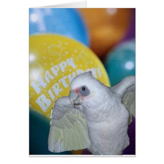 Carte d'anniversaire de cacatoès