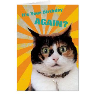 Carte d'anniversaire de chat