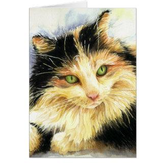 Carte d'anniversaire de chat de calicot 0010