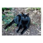 Carte d'anniversaire de chat noir 1