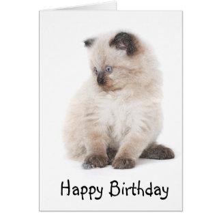 Carte d'anniversaire de chaton de Ragdoll