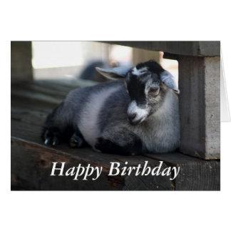 Carte d'anniversaire de chèvre