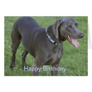 Carte d'anniversaire de chien de Weimaraner