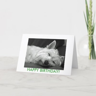 Carte d'anniversaire de chien de Westie par Digital_Wallpapers