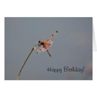 Carte d'anniversaire de libellule