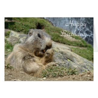 Carte d'anniversaire de Marmot