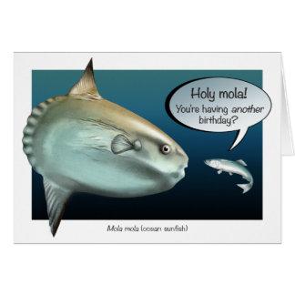 Carte d'anniversaire de Mola