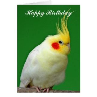 Carte d'anniversaire de photo d'oiseau de