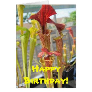 Carte d'anniversaire de plante carnivore