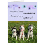 Carte d'anniversaire de trois chiens de traîneau