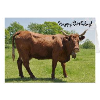 Carte d'anniversaire de vache à Salers