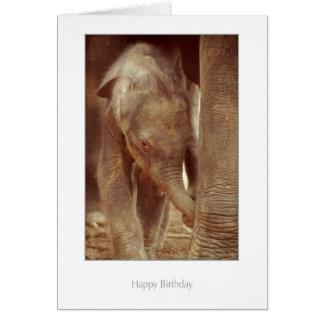 Carte d'anniversaire de veau d'éléphant