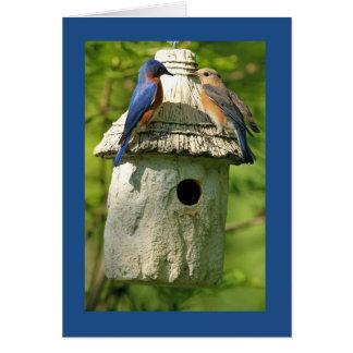 carte d'anniversaire d'oiseau bleu