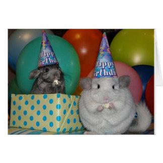 Carte d'anniversaire drôle de chinchilla