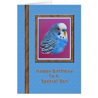 Carte d'anniversaire du fils avec la perruche