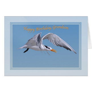 Carte d'anniversaire du petit-fils avec l'oiseau