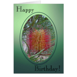 Carte d'anniversaire - fleur de Banksia