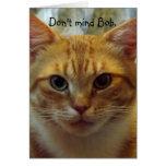 Carte d'anniversaire humoristique de chat