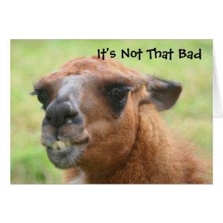 Carte d'anniversaire humoristique de lama fâché ci