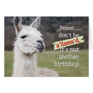 Carte d'anniversaire humoristique - le lama