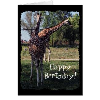 Carte d'anniversaire réticulée de girafes
