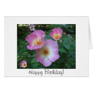 Carte d'anniversaire rose