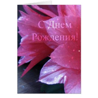 Carte d'anniversaire russe, Schlumbergera