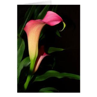 Carte d'art de fleur de zantedeschia