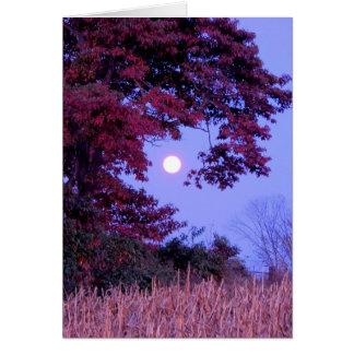 Carte d'automne avec la pleine lune, chêne de