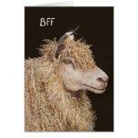 Carte de BFF avec les moutons et le chickadee