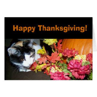 Carte de bon thanksgiving de chat de calicot