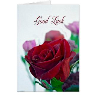 Carte de bonne chance avec un rose rouge
