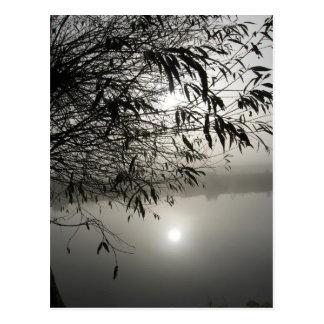 Carte de brume et d'ombre