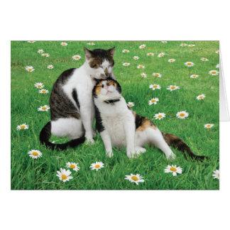Carte de chat d'anniversaire de mariage