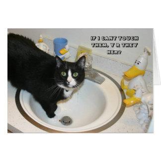 Carte de chat de LOL