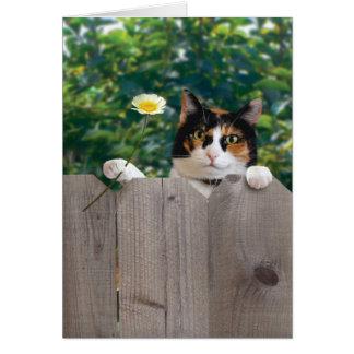 Carte de chat de Merci