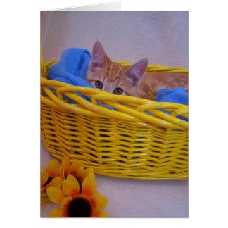 carte de chat de panier