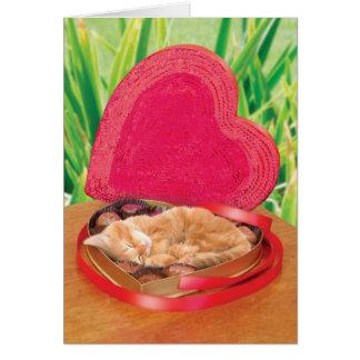 Carte de chat de Saint-Valentin