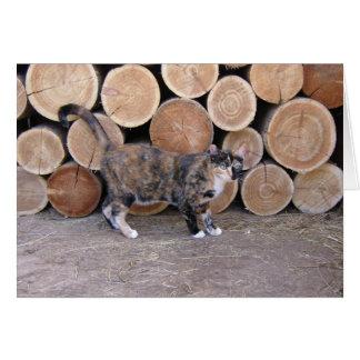 Carte de chat et de tas de bois