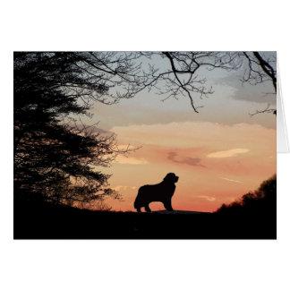 Carte de chien de Terre-Neuve
