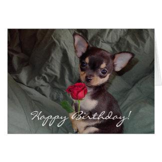 Carte de chiot de chiwawa de joyeux anniversaire