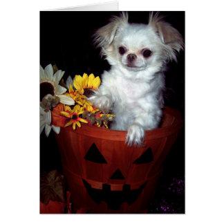 Carte de chiot de Halloween