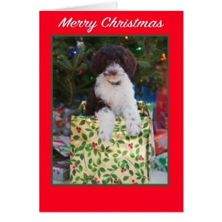 Carte de chiot de Labradoodle de Joyeux Noël