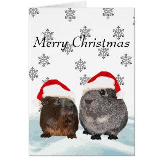 Carte de cobaye de Joyeux Noël