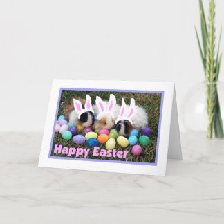 Carte de cobaye de lapin de Pâques