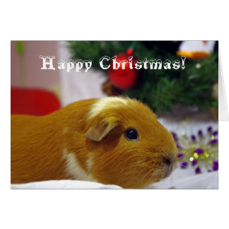 Carte de cobaye de Noël heureux