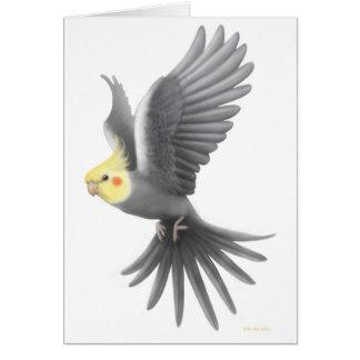 Carte de Cockatiel de vol